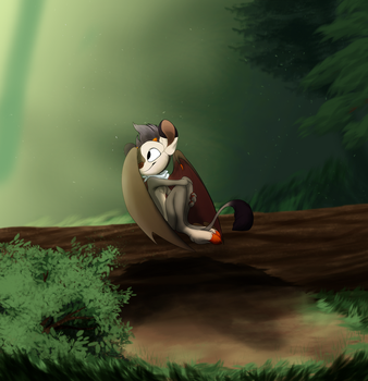 Relax in the Woods by Villanesque