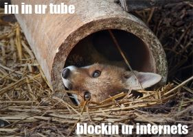 im in your tube... by Skia