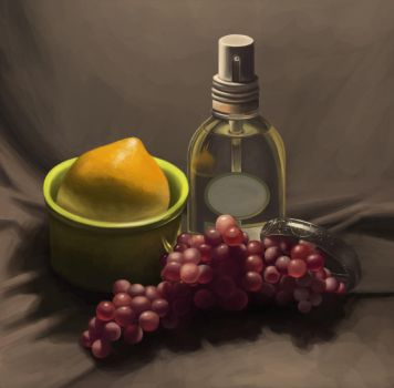 Still Life 1/1/2014 by hobohet