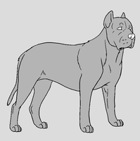 Dog Template - Cane Corso by NaruFreak123-Bases