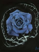 Rose bleue by BenF