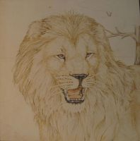 Lion 1978 by teiirka