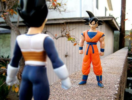 Vegeta and Goku . +2 by DBpictures