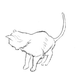 [animated] Cat turn study by Tempted-Fate