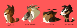 Bunch Of Shelties by Canvascope