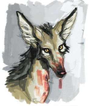 Painty Jackal by sinyx