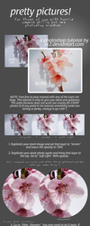 Pretty Pictures Photo Tutorial by Sx2