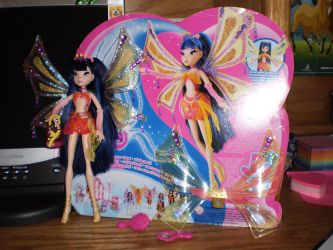 Musa Doll and Stuff by winxphantom