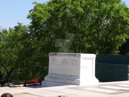Tomb of the Unknown Soldier by Bestestcat