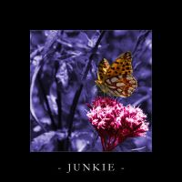 JUNKIE by shadowiness