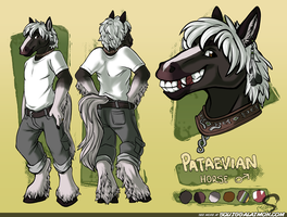 Pataevian Reference Sheet [CLEAN] by Squiggalaimon
