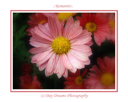 .:Romantic:. by DayDreamsPhotography