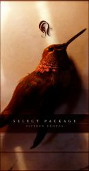 Package - Select - Wroth 1 by resurgere
