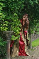 Lady Guinevere 29 by MarjoleinART-Stock