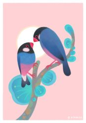 Java Sparrows by pikaole