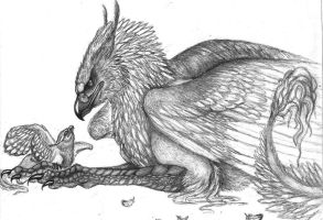 UPDATE:griffin chick by sioSIN
