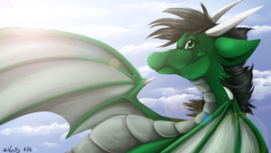 Fly with Me by Nestly