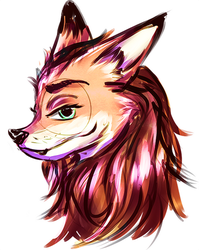 Fox Oc sketch by TaNa-Jo