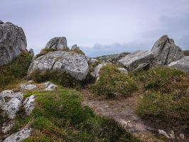 Brittany 10 - Rocks and Heath by HermitCrabStock