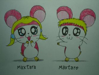 Maxtaro and Maxtara by macaustar