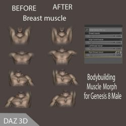 Muscle Morph for Genesis 8 Male by va-sily1