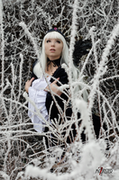 Suigintou - Rozen Maiden - [Cold] by GeniMonster