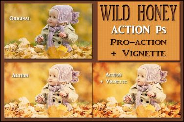 Wild honey  ACTION Ps by Laurent-Dubus
