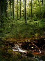 Forest Premade by MagicAngel8773