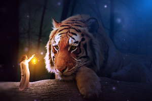 Photomanipulation | Small girl and Big tiger by Goldow