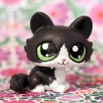 Maisy the cat (commission) LPS custom