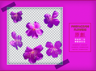 PngPack #30 flowers by ahui1107 by ahui1107