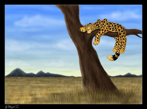 The leopard by Zamkowa