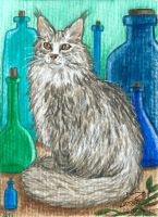 Alchemist cat by Woodswallow