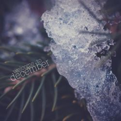 Welcome To December by dmaabsta