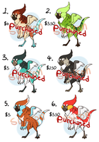 Birdy Paypal Adopts by Susiron