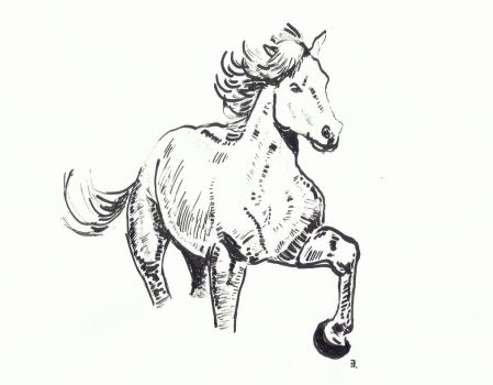 Inktober horse by proximafermata