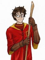 James Potter, Quidditch GOD by laerry