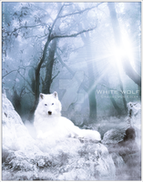 White wolf II by GeneRazART