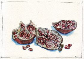 pomegranate 4 by lilac-f