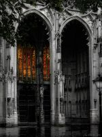 Cathedral by JacqChristiaan