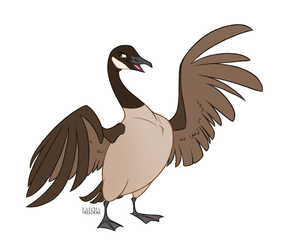 Canadian Goose by faithandfreedom