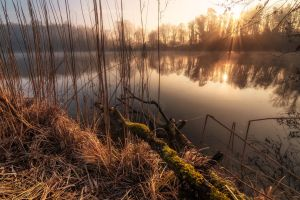 Unknown Germany pt. CCLVII by TheChosenPesssimist