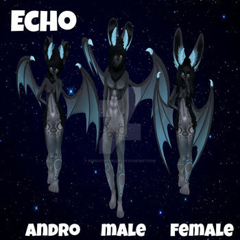 Echo Display by WibbleyWobbleys