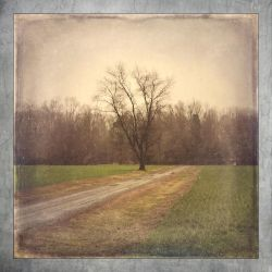 Slow road by johntomswift