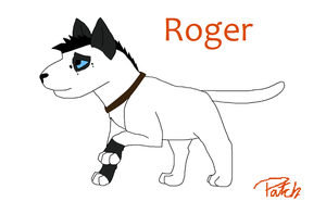 Roger by Patch21