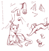 Spum sketches : cats by Osato-kun