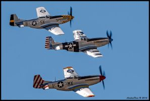Mustang Horsemen 2014 by AirshowDave