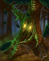 Pacifica Online - Dryad by JustineArt
