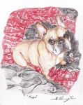 Maggie the French Bulldog pencil drawing Xmas Gift by ivantremblac