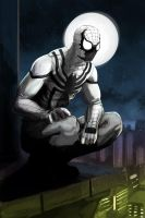 Anti Spider-man by xashe